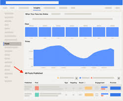 Facebook Analytics and Insights: A ...
