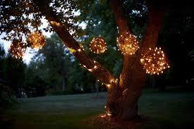 Hanging Outdoor Lights on Tree