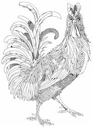 this is a preview of pippa rossi s forthing coloring book pippa s magical birds this is