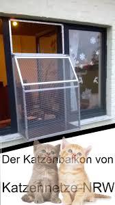 Katzennetz Nrw Die Adresse Für Ein Katzennetz Der Katzenbalkon
