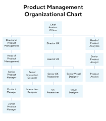 What Is A Chief Product Officer Definition Overview