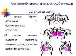 Анатомо физиологические особенности дыхательной системы у детей  Анатомические особенности дыхательной системы у детей реферат