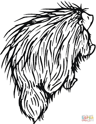 Small Picture Porcupine 8 coloring page Free Printable Coloring Pages