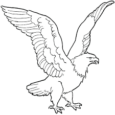 Bald Eagle Coloring Pages Avusturyavizesiinfo