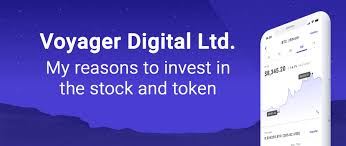 Ada 4 band 5.85 bat 73 bch 0.006 btc 0.0005 comp 0.128 dai 100 dash 0.02 enj 42.4 etc.2 eth 0.012 glm 208 knc 27.6 link 2.0. Voyager Digital Ltd My Reasons To Invest In The Stock And Token By Burg Medium