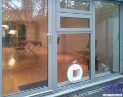 diy dog doors. Diy Dog For Decor DIY Fitting Of Cat Flaps And Four Paws Doors