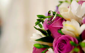 Free Wedding Pictures 6795057