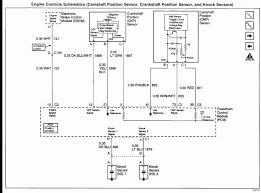 ls3 wiring harness diagram 1999 2002 ls1 ecm diagrams incredible ls1 LS2 Wiring Harness at Ls3 Wiring Harness Diagram