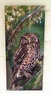 new zealand native owl outdoor wall art panel from my original on outdoor wall art new zealand with amazon ruru morepork new zealand native owl outdoor wall