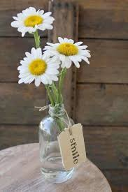 Pin by Felicia Bishop on Reception 2.0 | Happy flowers, Daisy love, Love  flowers