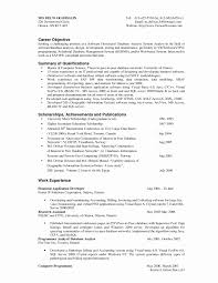 Software Programmer Resume Sample Awesome Awesome Collection