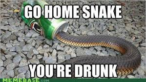 25 Very Funny Snake Images And Photos via Relatably.com