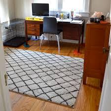 office rug.  rug criss cross rug in office ashandorangewordpresscom intended office rug e