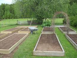 Small Picture backyard 50 Small Backyard Vegetable Garden Designing