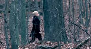 Hillary Clinton Should Stay in the Woods — The MODERATOR