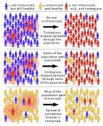 Herd Immunity Wikipedia
