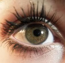 Vlek oog