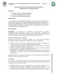 Clasificacion De Los Colorantes L Duilawyerlosangeles