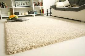 high pile rug 8x10
