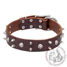 blackbeard 1 3 5 inch 40 mm wide leather pitbull dog collar with skulls and spikes