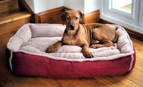 full image for the best dog beds for large breeds the best dog beds for small