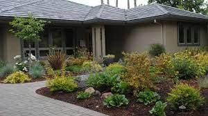 front yard ideas no grass landscape