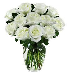 white sympathy roses avas flowers