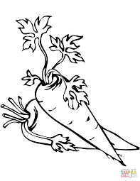 two carrots coloring page two carrots coloring page free printable coloring pages on coloring page of a carrot