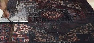 large size of cleaning oriental rug care fort lauderdale about us cleaners hollywood area first impressions