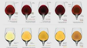 wine aging chart wine colour chart a guide to age and body