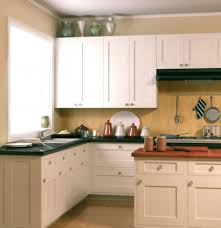 Kitchen Cabinets Door Styles Kitchen Amazing Replacing Kitchen Cabinet Doors Interior Home