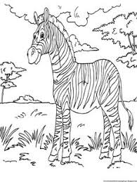 Small Picture GRASSLAND COLORING PAGES Coloringpages321com Homeschooling