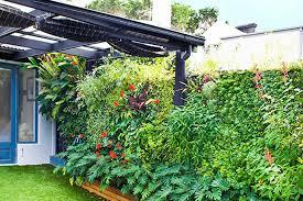 vertical garden wall wall garden