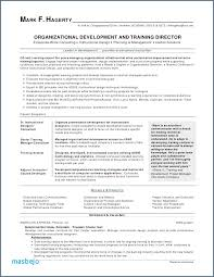 Executive Resume Inspiration Executive Resume Writer Nursing Resume Writing Resume