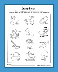 The worksheets cover the five senses, life cycles do they want to be a scientist when they grow up? Am Living Worksheets For Kindergarten Science Printable Children Plot Points Calculator Science Worksheets For Children Worksheet Fractions Different Denominators Worksheets Is Negative 5 A Whole Number Year 1 Mental Math Worksheets Are