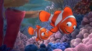 finding nemo movie review finding nemo movie nemo and marlin