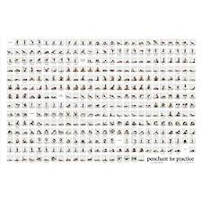 Amazon Com Yoga Posture Poster Other Products Posters