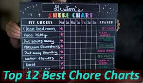 Top 12 Best Chore Charts In The Market Today 2019