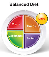 Nutrition Food Chart Balanced Diet Chart Healthy Nutrition Food Plan Veg