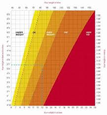 Average Weight Chart Female Height And Weight Chart Female Kozen Jasonkellyphoto Co