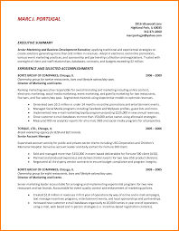 10 Summary For Resume Examples Foot Volley Mania
