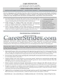 Chief Operating Officer Resumes C Level Cv Template Sample Resume Resume Examples Resume