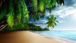 Tropical Beach Paradise 4K Ultra HD ...