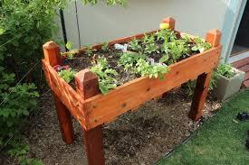 diy raised planter box a step by step