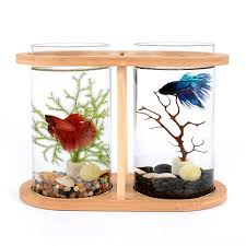 office desk fish tank. Segarty Cool Design Desktop Glass Fish Tank | Small Bowls With Dual Vase And Office Desk B