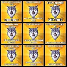 motivation/inspiration on Pinterest | Wolves, Take Responsibility ... via Relatably.com