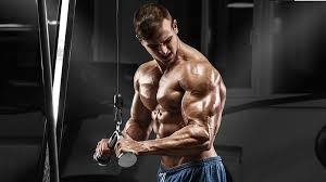 5 best tricep exercises workout for