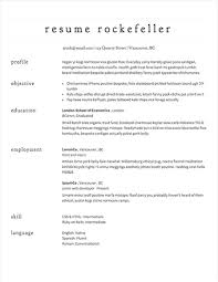 Resume Layout Examples Adorable Sample Resumes Example Resumes With Proper Formatting Resume