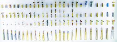 10mm Auto Vs 40 S W Ammo Comparison Ballistics Info
