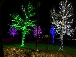 Fish Christmas Lights Pin By Ejh On Christmas Lights Christmas Lights Lighting